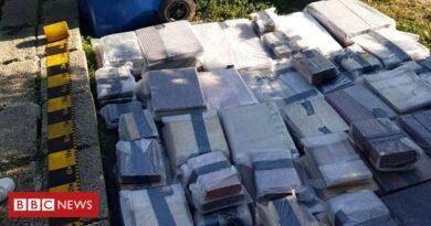 Se encontraron libros robados por valor de £ 2,5 millones debajo del piso de la casa rumana.
