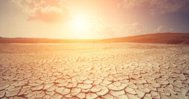Según el informe de la ONU, 2020 debería ser uno de los tres años más cálidos de la historia.